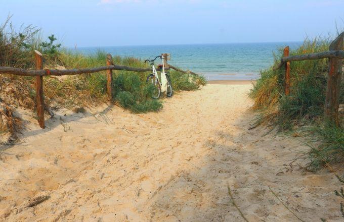 Grzybowo - okolica - jedno z zejść na plażę
